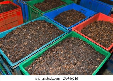 Bulk tea in boxes on the tea factory