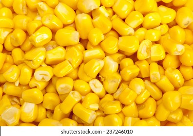 Bulk of yellow corn grains texture
