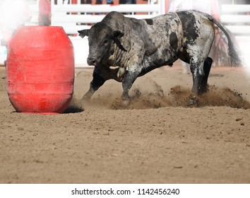 Bull and barrel at rodeo