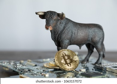 Bull With Bitcoin Cryptocurrency On Computer Motherboard. Bull Market Wall Street Financial Concept With Copy Space.