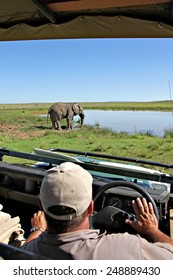 A bull elephant wades into a watering hole in a South African game park as a game ranger looks on.