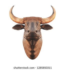 bull head statue for wall decoration on white background