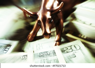 Bull Market Stock Photo High Quality