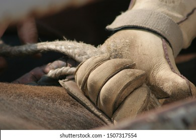 Bull rider getting hand set in rope