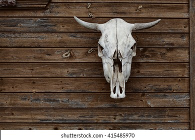 bull skull on a vintage wooden background