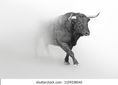 Bull wildlife art collection white edition, animal grayscale wallpaper