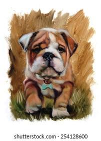 Bulldog puppy cute oil painting torn edges