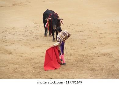 bullfight at Las Ventas, Madrid.