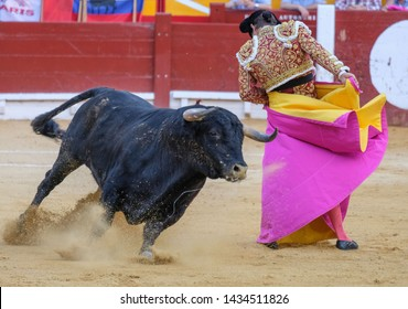 Bullfight in Spain. Spanish bullfighter in the bullfighting arena