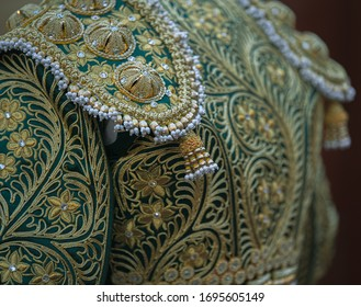 bullfighter costume, green and gold.