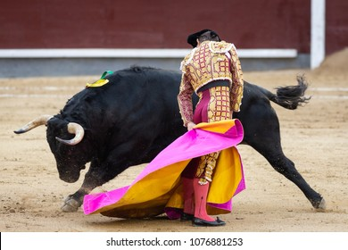Bullfighter in front of fighting bull