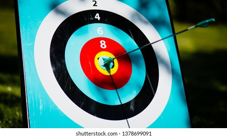 Bulls eye - arrrow in the middl of a target.