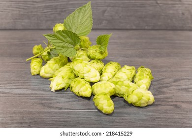 bumps or inflorescence hops ordinary