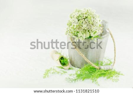 Bunch achillea millefolium white flower bundle stock photo edit now bunch achillea millefolium with white flower bundle of yarrow fresh flowers and leaves of mightylinksfo