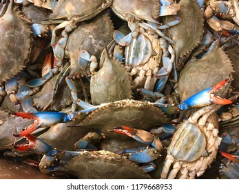 A bunch of alive blue crabs at the market shelf