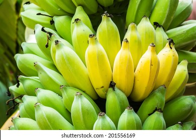 Bunch of bananas is ripe