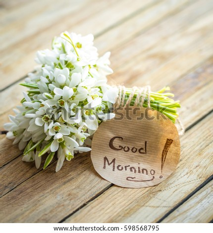 Bunch beautiful delicate snowdrops words good stock photo edit now a bunch of beautiful delicate snowdrops and the words good morning on a round piece of m4hsunfo