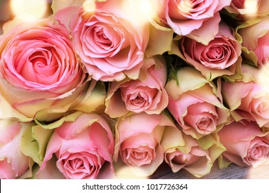 Bunch of beautiful pink roses with golden bokeh for mothers day close up