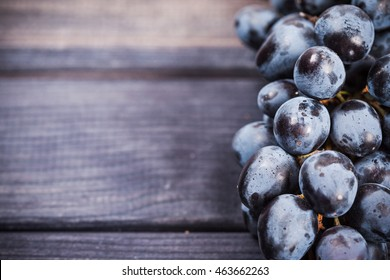 bunch of black grapes close up on the table still life
