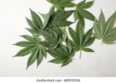 A bunch of canabis leaves
