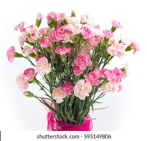 bunch of carnation on white background