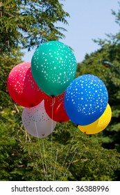 Bunch Of Colored Party Balloons in the park