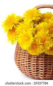 Bunch of dandelions in a basket