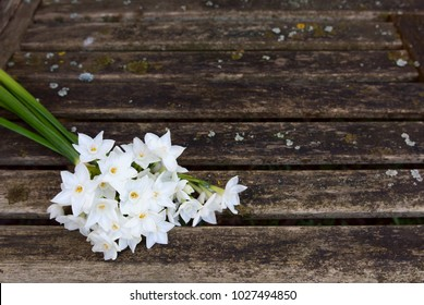Bunch of delicate white narcissi flowers on a rustic wooden garden bench, with copy space