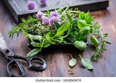 Bunch of different herbs for cooking on wooden background