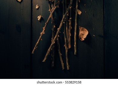 Bunch of dried rose flower stems or branches on dark background. Close up from above.