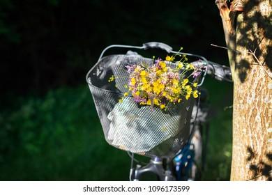 Bunch of field flowers in the bike basket
