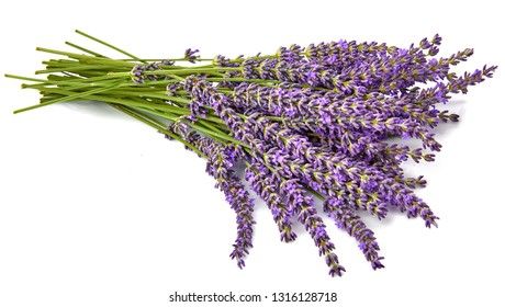 Bunch flower lavender therapeutic herbs, isolated on white background.