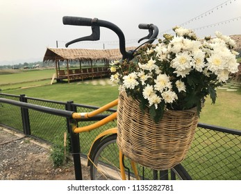 Bunch Of Flowers In The Basket Among The Grass