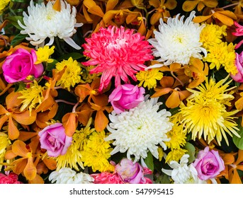 Bunch of flowers and flower texture.