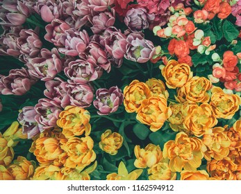 Bunch of flowers top view,Concept background Nature.vintage