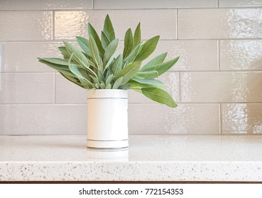 Bunch of freah sage leaves in a ceramic cup on a granite countertop