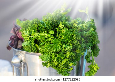 Bunch of fresh appetizing green onions, fennel and parsley at sunlight