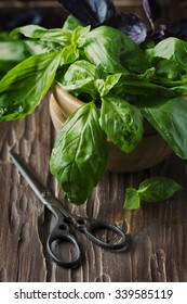 Bunch of fresh basil on the vintage table, selective focus