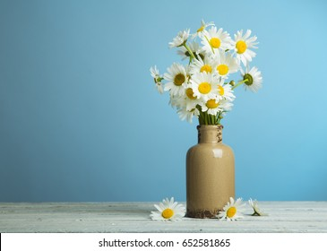 bunch of fresh camomile flowers on blue background