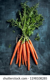 Bunch of fresh carrots with green leaves over beton background. Vegetable. Food