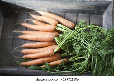 bunch of fresh carrots in a wooden tray
