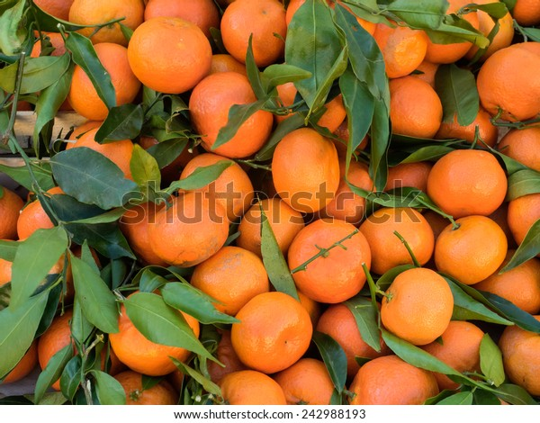 Bunch of fresh clementines with green leaves