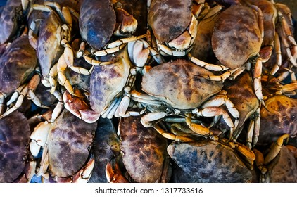 A bunch of fresh crabs on display at a fish market