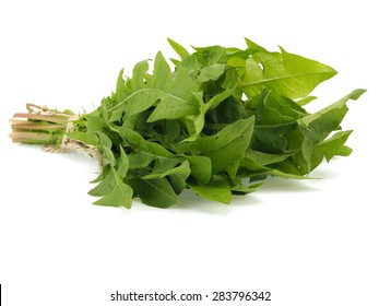 Bunch of fresh dandelion leaves on a white background