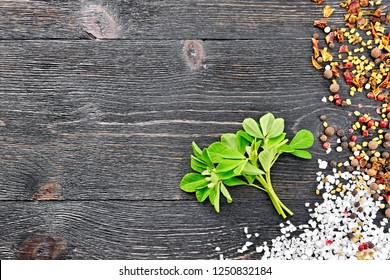 Bunch of fresh fenugreek with green leaves and white flowers, salt, pepper, fenugreek seeds on a black wooden board background