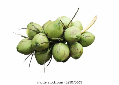 Bunch Of Coconut Images Stock Photos Vectors