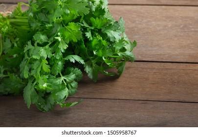 Bunch of fresh green coriander or cilantro on wooden background.