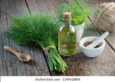 Bunch of fresh green dill, mortar of fennel seeds and dill oil on wooden board.
