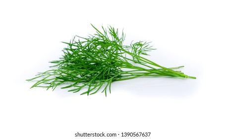 Bunch fresh green dill on white background.