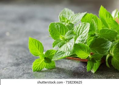 Bunch of fresh green organic mint leaf on black backround, selective focus